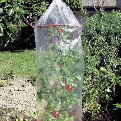 3er Set Tomatenhauben mit Abstandsringen