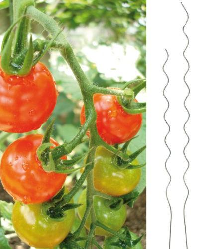 10er Set Tomatenspiralstäbe Alu 180 cm