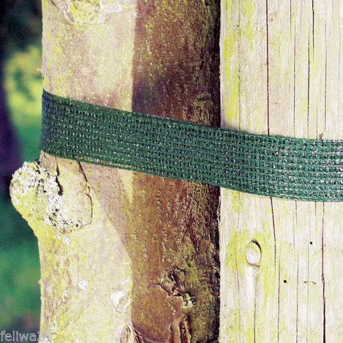 Baumanbinder Grün 50 m Rolle