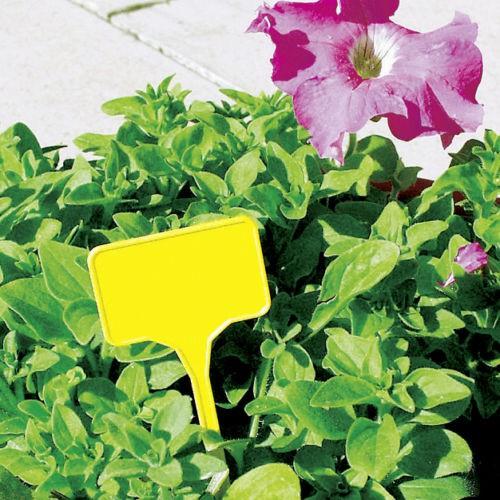 10er Satz Pflanzensteckschilder